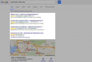 Annonces premium Google Adwords